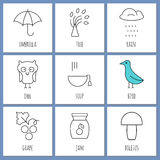 Coloring pages symbols of autumn Stock Photo