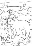 Coloring pages. Wild animals. Kind bear  Stock Photos