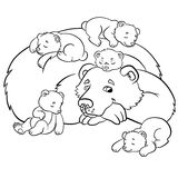 Coloring pages. Wild animals. Kind bear Stock Image