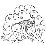 Coloring pages. Wild animals. Little cute baby bear sleeps. Royalty Free Stock Images