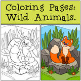 Coloring Pages: Wild animals. Little cute baby fox sits and looks at the fly. Coloring Pages: Wild animals. Little cute baby fox sits and looks at the fly in royalty free illustration