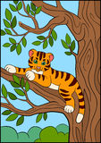 Coloring pages. Wild animals. Little cute baby tiger lays and smiles. Stock Photography