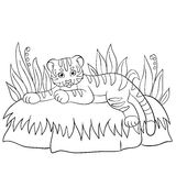 Coloring pages. Wild animals. Little cute baby tiger smiles. Royalty Free Stock Photo