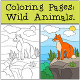 Coloring Pages: Wild animals. Little cute fox stands on the top of the rock. Coloring Pages: Wild animals. Little cute fox stands on the top of the rock and Stock Photography