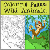 Coloring Pages: Wild Animals. Little cute monkey. Stock Photos