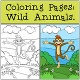 Coloring Pages: Wild Animals. Little cute monkey. Royalty Free Stock Photography