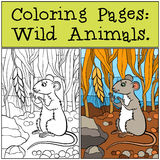 Coloring Pages: Wild Animals. Little cute mouse. Royalty Free Stock Images