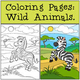 Coloring Pages: Wild Animals. Little cute zebra. Royalty Free Stock Photos