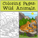 Coloring Pages: Wild Animals. Mother jaguar with her cubs. Royalty Free Stock Image