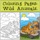 Coloring Pages: Wild Animals. Mother jaguar with her cubs. Stock Photos