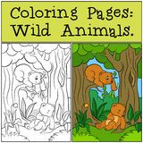 Coloring Pages: Wild Animals. Two little cute baby bears. Coloring Pages: Wild Animals. Two little cute baby bears in the forest Royalty Free Stock Photography