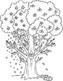 Coloring season tree Royalty Free Stock Image