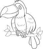 Coloring with toucan Stock Image