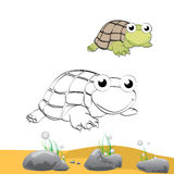 Coloring turtle Stock Photography