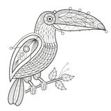 Coloritura adulta Tucano dell'uccello illustrazione di stock