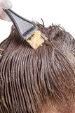 Coloritura di capelli Fotografia Stock