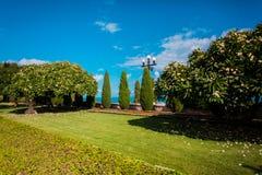 Coloriu um jardim ensolarado Fotografia de Stock Royalty Free
