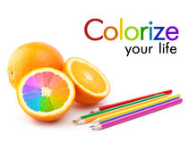 Colorize your life concept Royalty Free Stock Photography