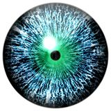 Colorized animal blue eyeball 3d. Texture, white background, little pulpil and green round royalty free stock photos