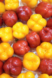Colorized bell peppers Stock Images