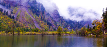 The colorized grove and lakes. In raining which is in Bipenggou area of Sichuan province, the southwestern China. It's the famous colorized forest viewing area royalty free stock photo