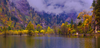 The colorized grove and lakes Royalty Free Stock Photography