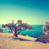 Colorized vintage mountain landscape. Ukraine. Crimea royalty free stock photos
