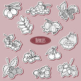 Colorless set of berries, vector cartoon stickers for children Royalty Free Stock Photo