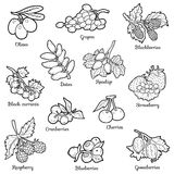 Colorless set of berries, vector cartoon stickers for children Royalty Free Stock Photography