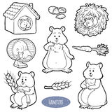 Colorless set of cute domestic animals and objects (hamsters). Colorless set of cute domestic animals and objects, vector stickers with family of hamsters and Stock Photography
