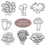 Colorless set of japanese mushrooms Royalty Free Stock Photos