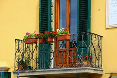 The colors along the canal. Flowers on the terrace in Venice Royalty Free Stock Images