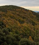 The colors of Autumn appear on the mountain, corollarizing it.  Stock Photography