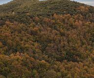 The colors of Autumn appear on the mountain, corollarizing it.  Stock Photos