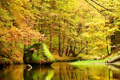 Colors of autumn mountain river. Colorful banks with leaves, trees bended above river. Big boulder in the river Stock Image