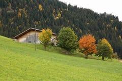 Colors of autumn stock photos