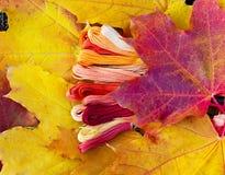 Colors of autumn, multicolor yarns looks like autumn leaves. Colors of autumn, colorful mouline threads look like autumn leaves Royalty Free Stock Image