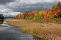 The Colors of Autumn Royalty Free Stock Image