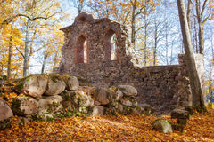 Colors of autumn in Sigulda. Ruins of Krimulda's castle in Sigulda Stock Photography