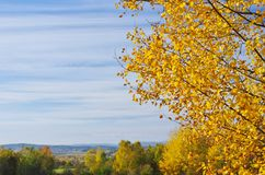 Colors of Autumn. Autumn colors with sky in October in background, Czech Republic stock photos