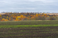 Colors of autumnal landscape Royalty Free Stock Photo