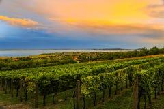 Colors of the Balaton Summer royalty free stock photos