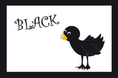 Colors: black Royalty Free Stock Images