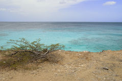 Colors of the Caribbean Royalty Free Stock Photography