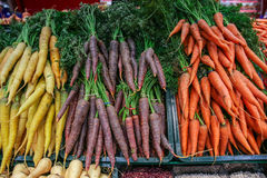 colors carrots Royalty Free Stock Photo