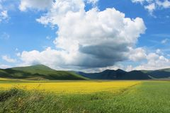 The colors of castelluccio di norcia royalty free stock photos