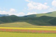 The colors of castelluccio di norcia stock photography
