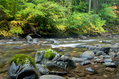 Colors of Cispus River Royalty Free Stock Photo