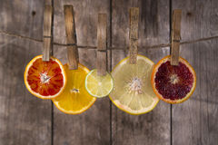 The colors of the citrus fruit Royalty Free Stock Photo