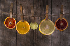 The colors of the citrus fruit Royalty Free Stock Image